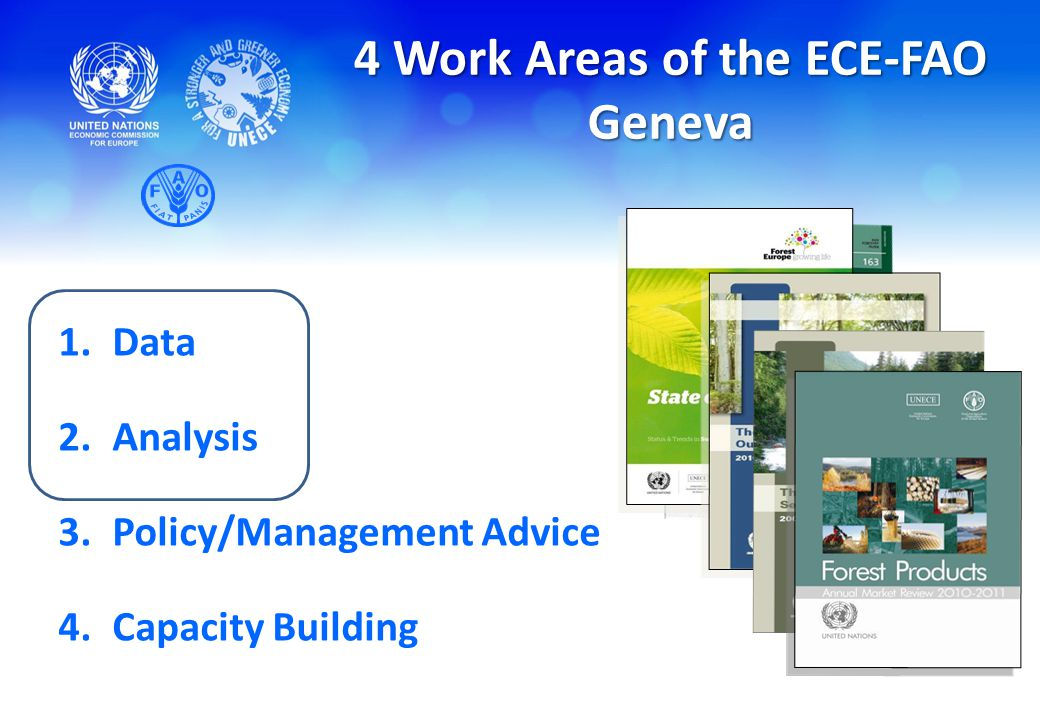 4 Work Areas of the ECE-FAO Geneva 1.Data 2.Analysis 3.Policy/Management Advice 4.Capacity Building