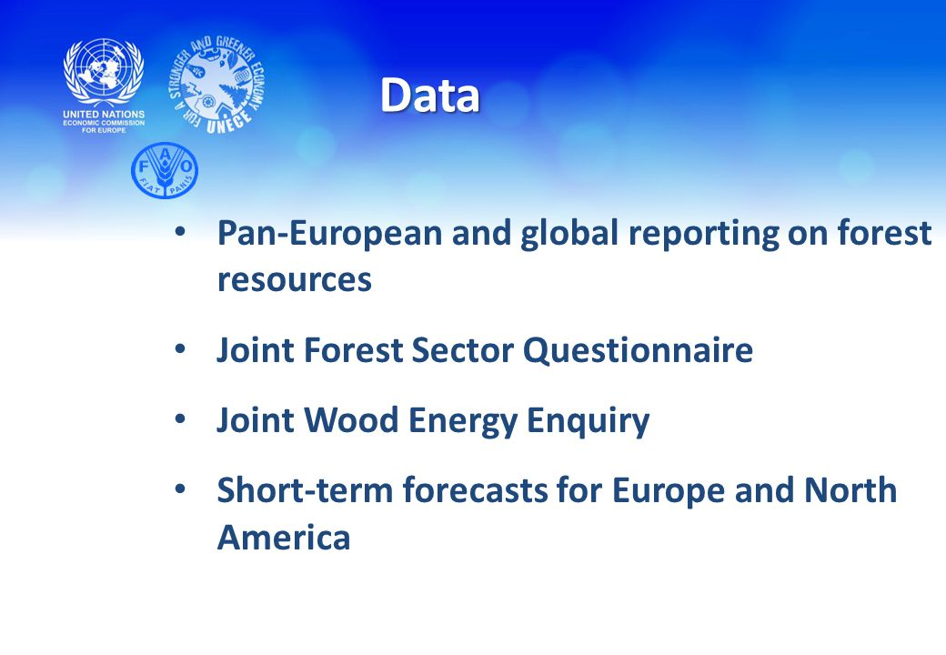 Pan-European and global reporting on forest resources Joint Forest Sector Questionnaire Joint Wood Energy Enquiry Short-term forecasts for Europe and North America Data