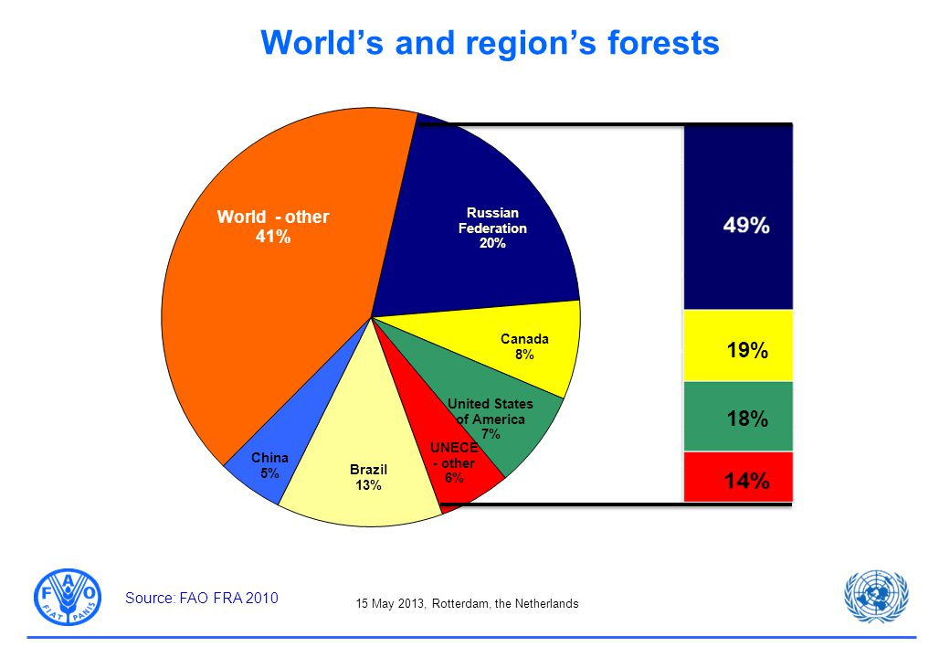 15 May 2013, Rotterdam, the Netherlands World's and region's forests 19% 18% Source: FAO FRA 2010