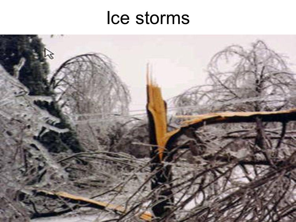 13 Ice storms
