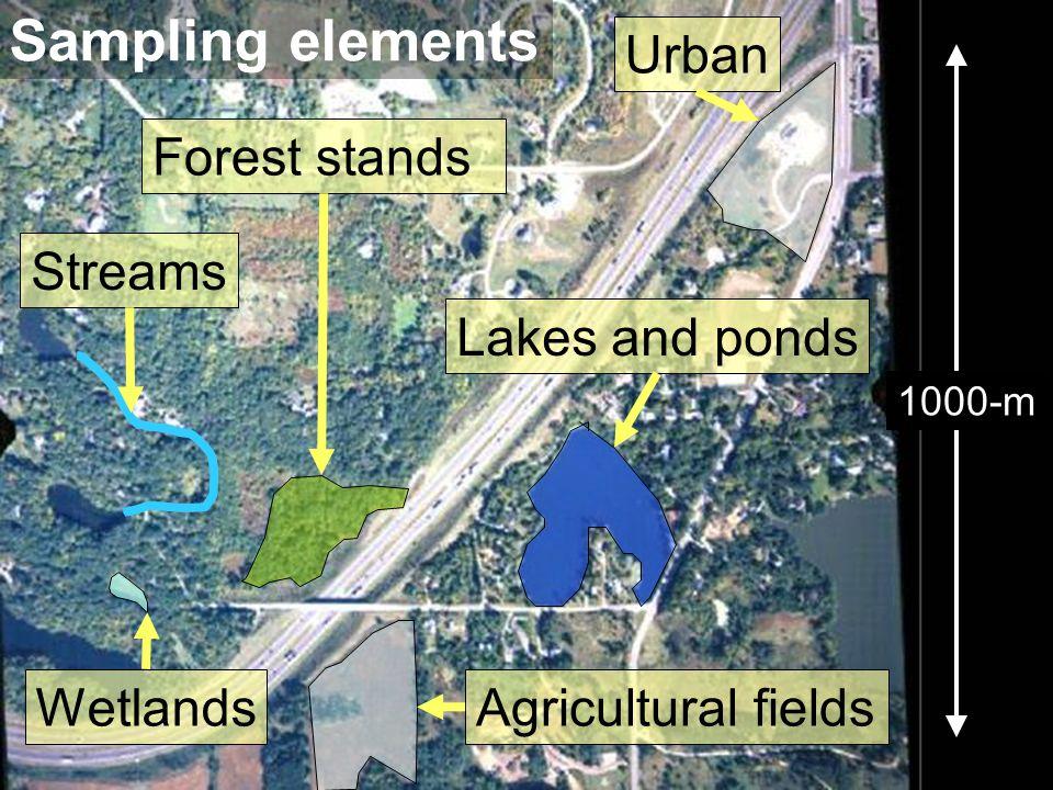 20 1000-m Agricultural fields Wetlands Lakes and pondsStreamsForest standsUrban Sampling elements