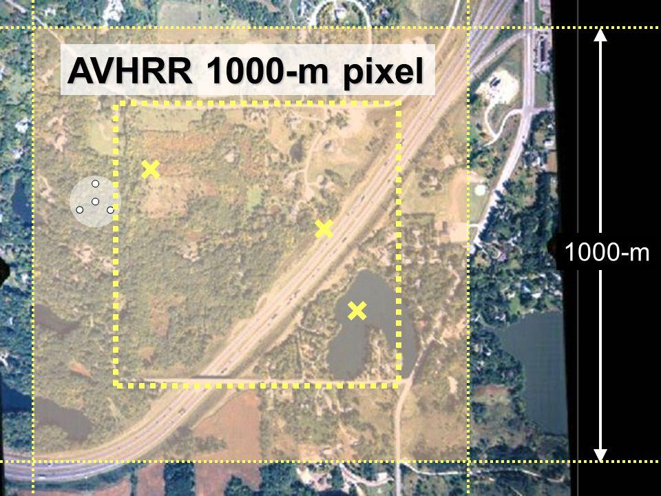 24 1000-m AVHRR 1000-m pixel