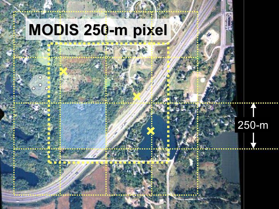 25 MODIS 250-m pixel 250-m