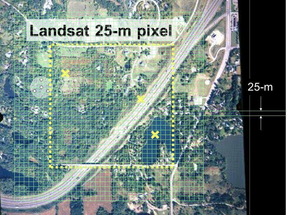 26 Landsat 25-m pixel 25-m