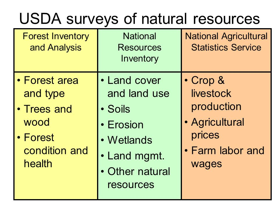 30 USDA surveys of natural resources Forest area and type Trees and wood Forest condition and health Forest Inventory and Analysis Land cover and land use Soils Erosion Wetlands Land mgmt.