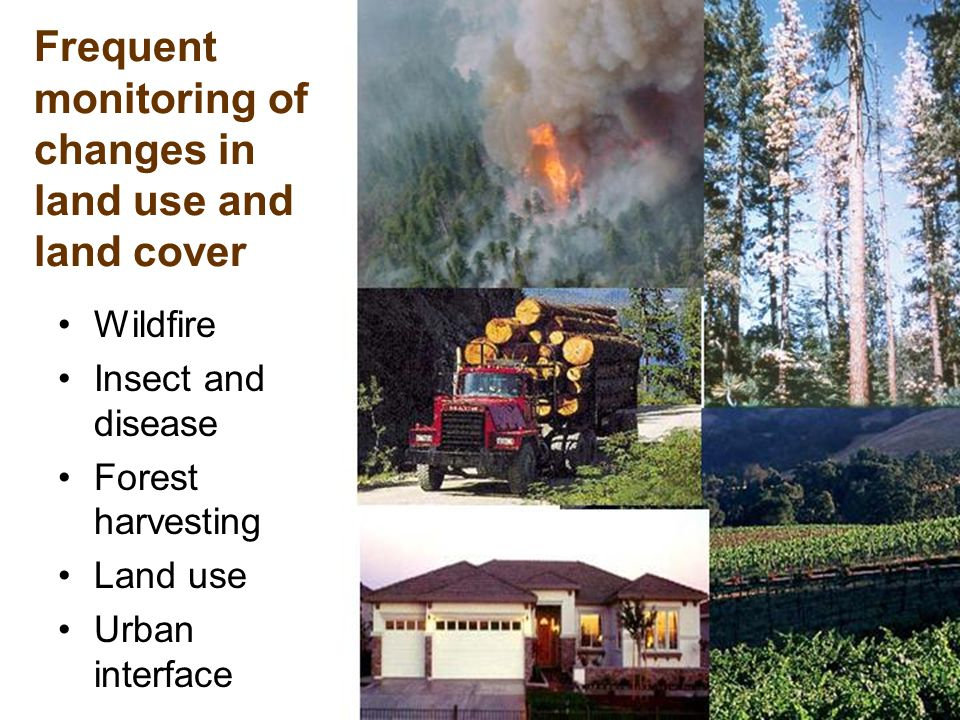 7 Frequent monitoring of changes in land use and land cover Wildfire Insect and disease Forest harvesting Land use Urban interface