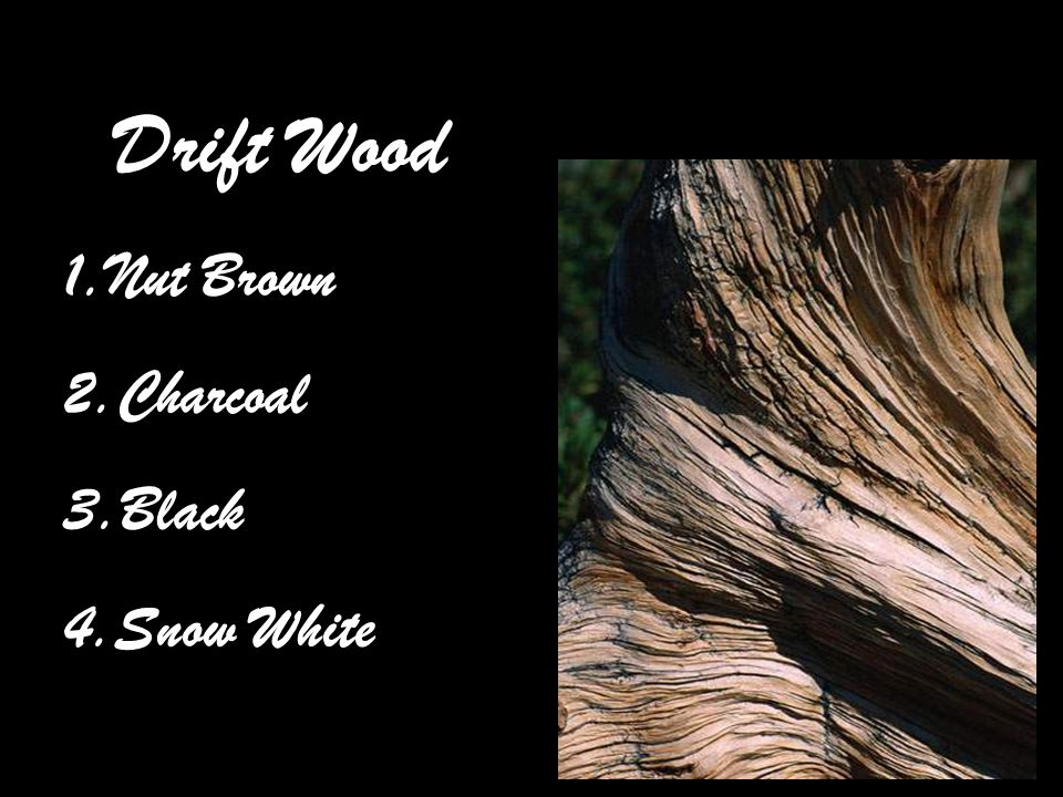 Drift Wood 1.Nut Brown 2.Charcoal 3.Black 4.Snow White
