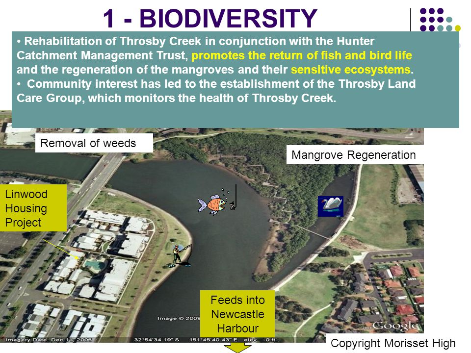 1 - Biodiversity Feeds into Newcastle Harbour Rehabilitation of Throsby Creek in conjunction with the Hunter Catchment Management Trust, promotes the return of fish and bird life and the regeneration of the mangroves and their sensitive ecosystems.