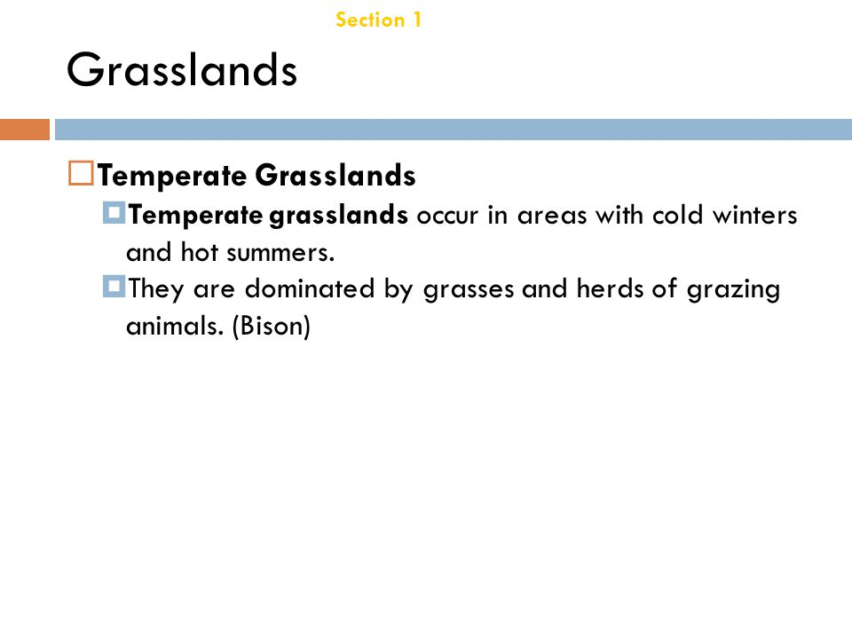 Chapter 21 Taiga Section 1 Terrestrial Biomes