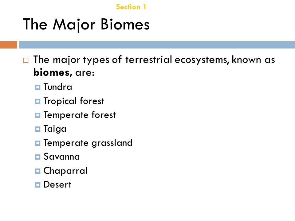 Chapter 21 Temperate Deciduous Forest Section 1 Terrestrial Biomes