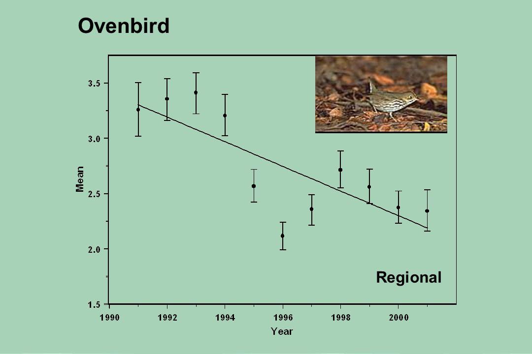 White-throated Sparrow Regional