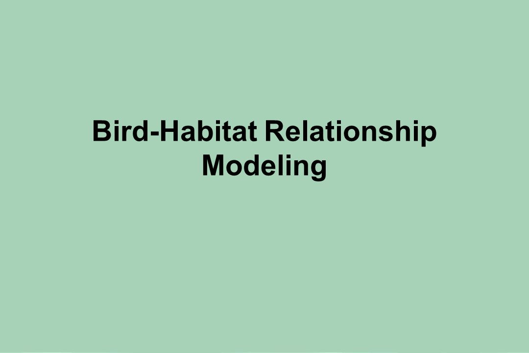 Developing Models to Describe How Birds Respond to Forest Habitat