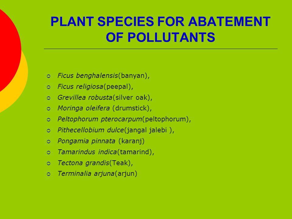 PLANT SPECIES FOR ABATEMENT OF POLLUTANTS  Ficus benghalensis(banyan),  Ficus religiosa(peepal),  Grevillea robusta(silver oak),  Moringa oleifera (drumstick),  Peltophorum pterocarpum(peltophorum),  Pithecellobium dulce(jangal jalebi ),  Pongamia pinnata (karanj)  Tamarindus indica(tamarind),  Tectona grandis(Teak),  Terminalia arjuna(arjun)