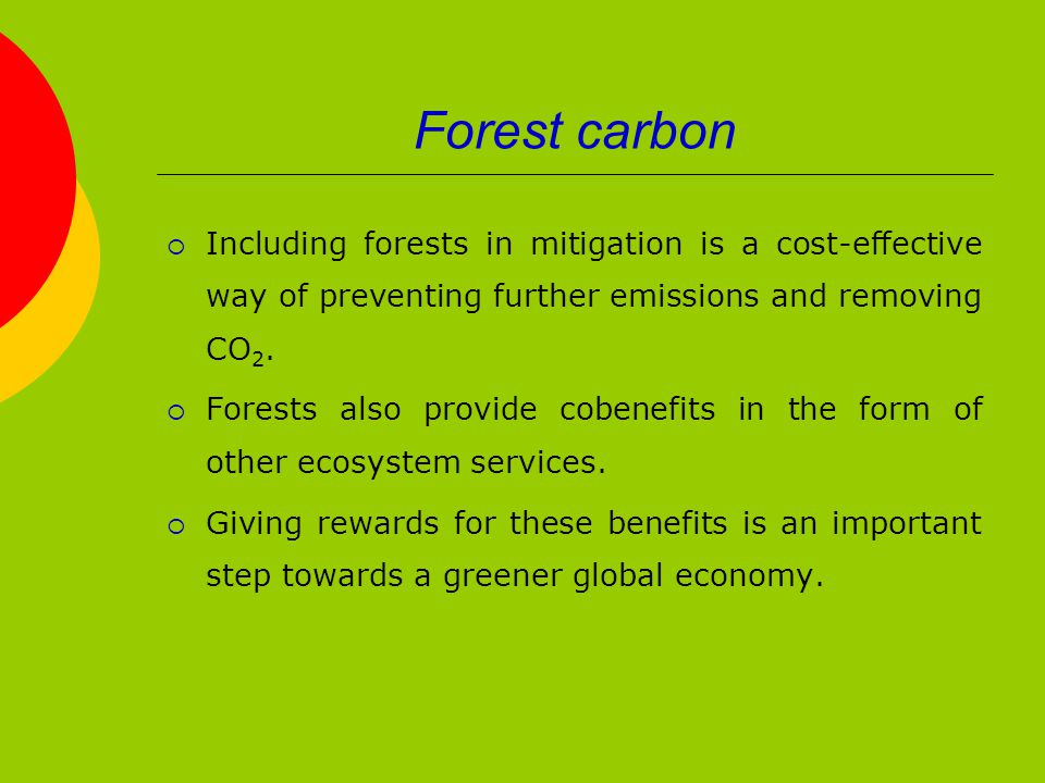 Forest carbon  Including forests in mitigation is a cost-effective way of preventing further emissions and removing CO 2.
