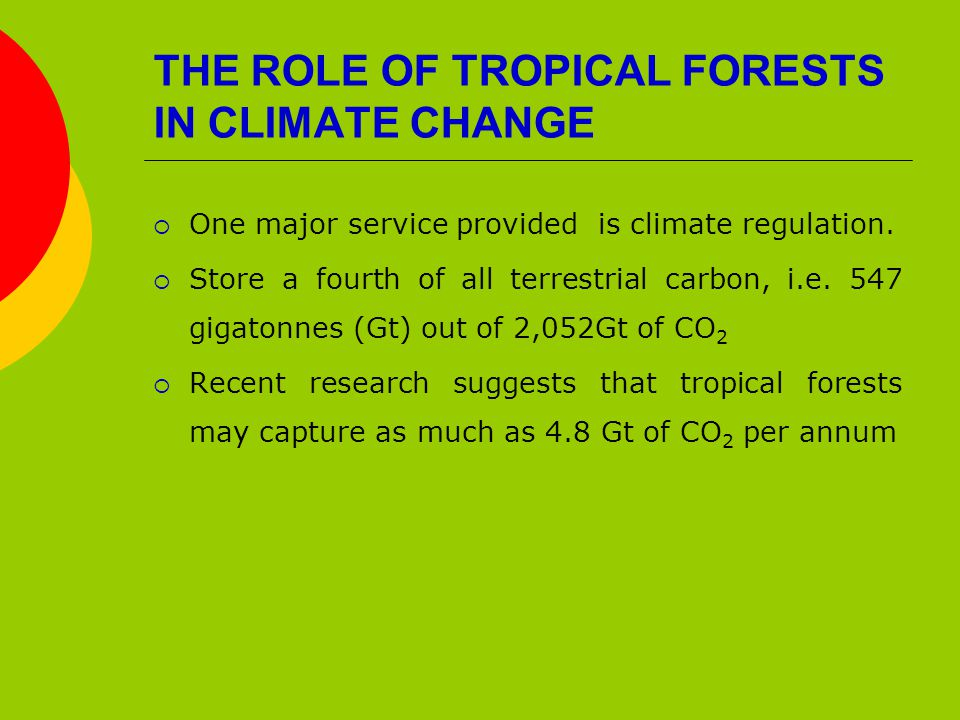 THE ROLE OF TROPICAL FORESTS IN CLIMATE CHANGE  One major service provided is climate regulation.