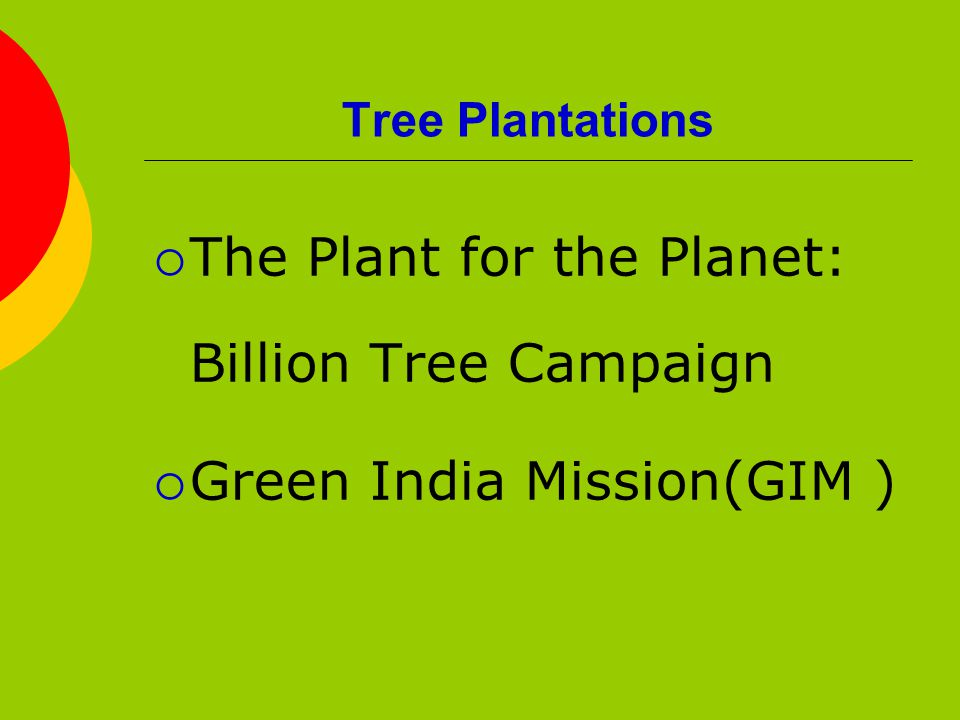 Tree Plantations  The Plant for the Planet: Billion Tree Campaign  Green India Mission(GIM )