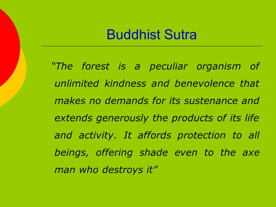 Buddhist Sutra The forest is a peculiar organism of unlimited kindness and benevolence that makes no demands for its sustenance and extends generously the products of its life and activity.