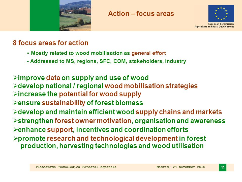 Plataforma Tecnologica Forestal Espanola Madrid, 24 November 2010 11 8 focus areas for action - Mostly related to wood mobilisation as general effort - Addressed to MS, regions, SFC, COM, stakeholders, industry  improve data on supply and use of wood  develop national / regional wood mobilisation strategies  increase the potential for wood supply  ensure sustainability of forest biomass  develop and maintain efficient wood supply chains and markets  strengthen forest owner motivation, organisation and awareness  enhance support, incentives and coordination efforts  promote research and technological development in forest production, harvesting technologies and wood utilisation Action – focus areas