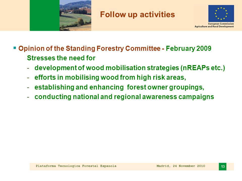 Plataforma Tecnologica Forestal Espanola Madrid, 24 November 2010 13  Opinion of the Standing Forestry Committee - February 2009 Stresses the need for -development of wood mobilisation strategies (nREAPs etc.) -efforts in mobilising wood from high risk areas, -establishing and enhancing forest owner groupings, -conducting national and regional awareness campaigns Follow up activities