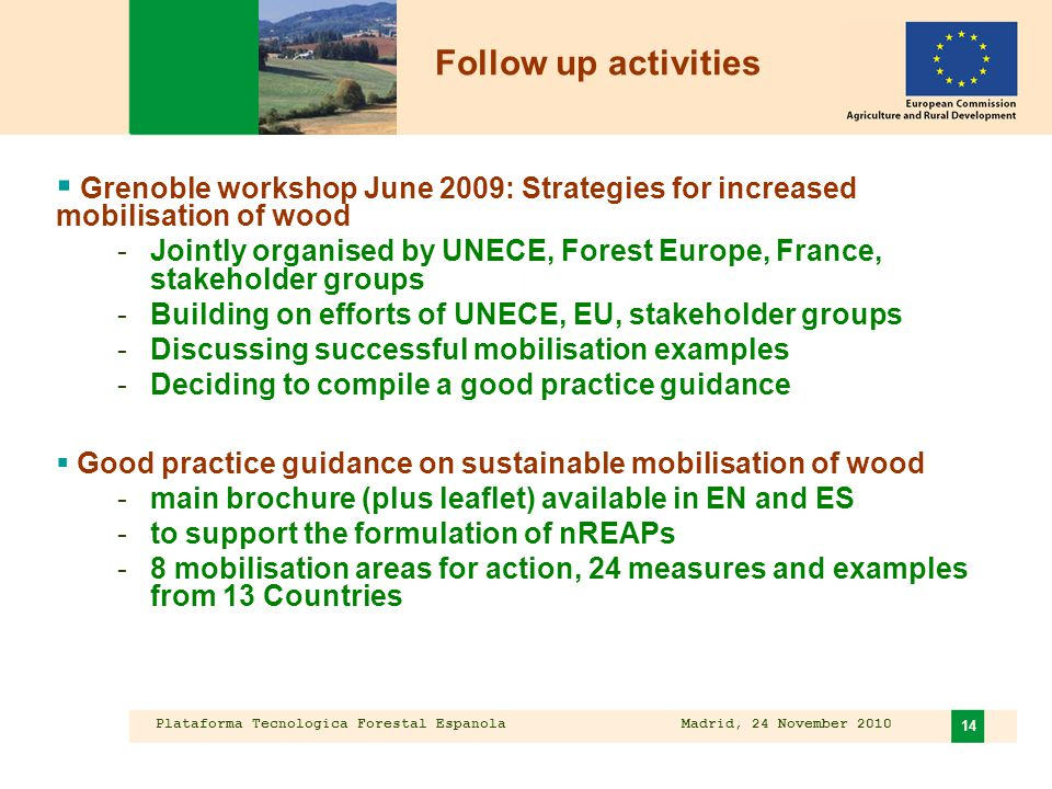 Plataforma Tecnologica Forestal Espanola Madrid, 24 November 2010 14  Grenoble workshop June 2009: Strategies for increased mobilisation of wood -Jointly organised by UNECE, Forest Europe, France, stakeholder groups -Building on efforts of UNECE, EU, stakeholder groups -Discussing successful mobilisation examples -Deciding to compile a good practice guidance  Good practice guidance on sustainable mobilisation of wood -main brochure (plus leaflet) available in EN and ES -to support the formulation of nREAPs -8 mobilisation areas for action, 24 measures and examples from 13 Countries Follow up activities