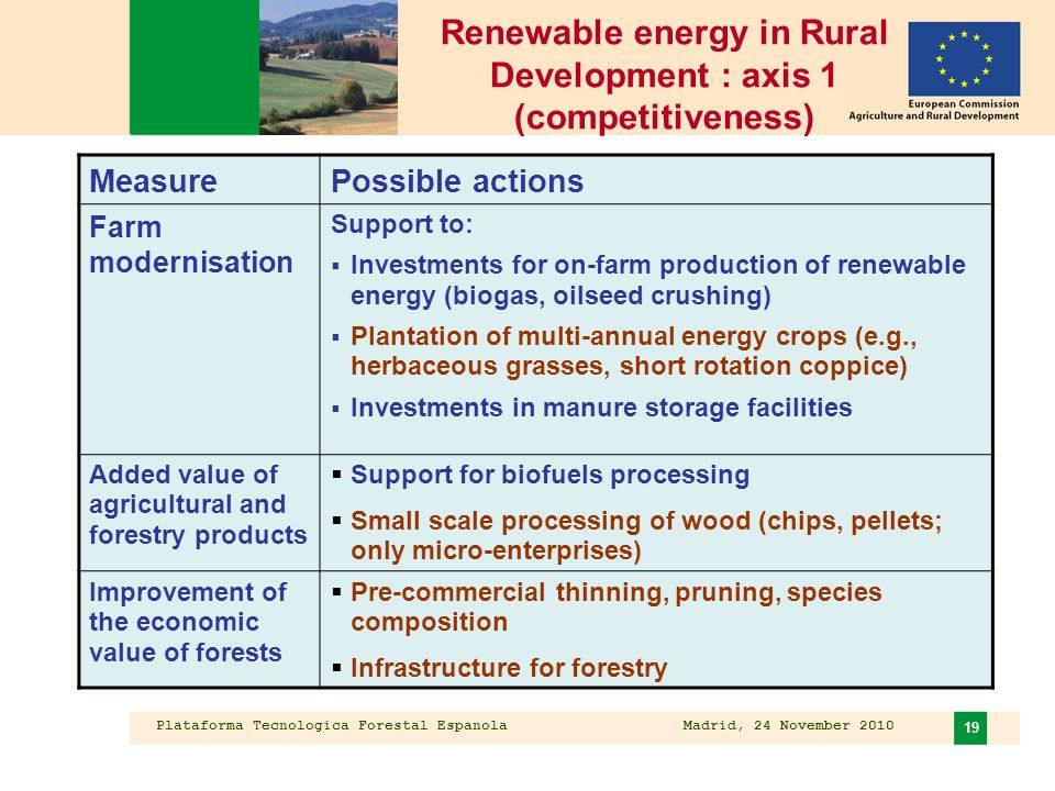 Plataforma Tecnologica Forestal Espanola Madrid, 24 November 2010 19 Renewable energy in Rural Development : axis 1 (competitiveness) MeasurePossible actions Farm modernisation Support to:  Investments for on-farm production of renewable energy (biogas, oilseed crushing)  Plantation of multi-annual energy crops (e.g., herbaceous grasses, short rotation coppice)  Investments in manure storage facilities Added value of agricultural and forestry products  Support for biofuels processing  Small scale processing of wood (chips, pellets; only micro-enterprises) Improvement of the economic value of forests  Pre-commercial thinning, pruning, species composition  Infrastructure for forestry