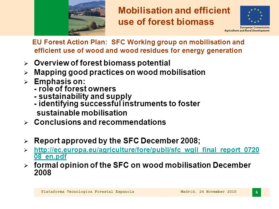 Plataforma Tecnologica Forestal Espanola Madrid, 24 November 2010 6 Mobilisation and efficient use of forest biomass  Overview of forest biomass pote
