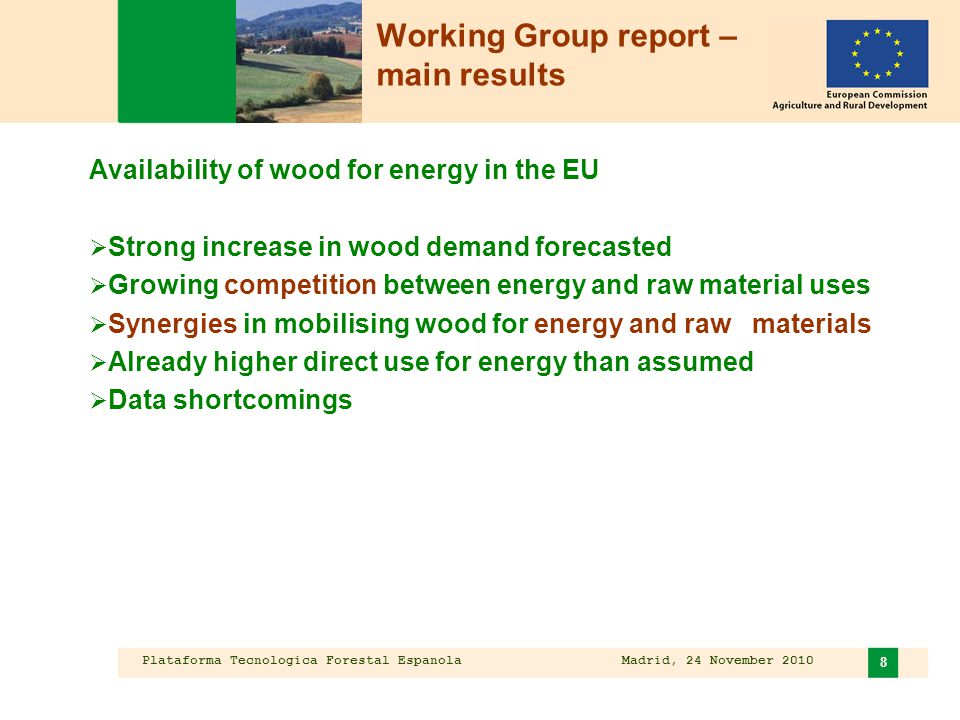 Plataforma Tecnologica Forestal Espanola Madrid, 24 November 2010 8 Working Group report – main results Availability of wood for energy in the EU  Strong increase in wood demand forecasted  Growing competition between energy and raw material uses  Synergies in mobilising wood for energy and raw materials  Already higher direct use for energy than assumed  Data shortcomings