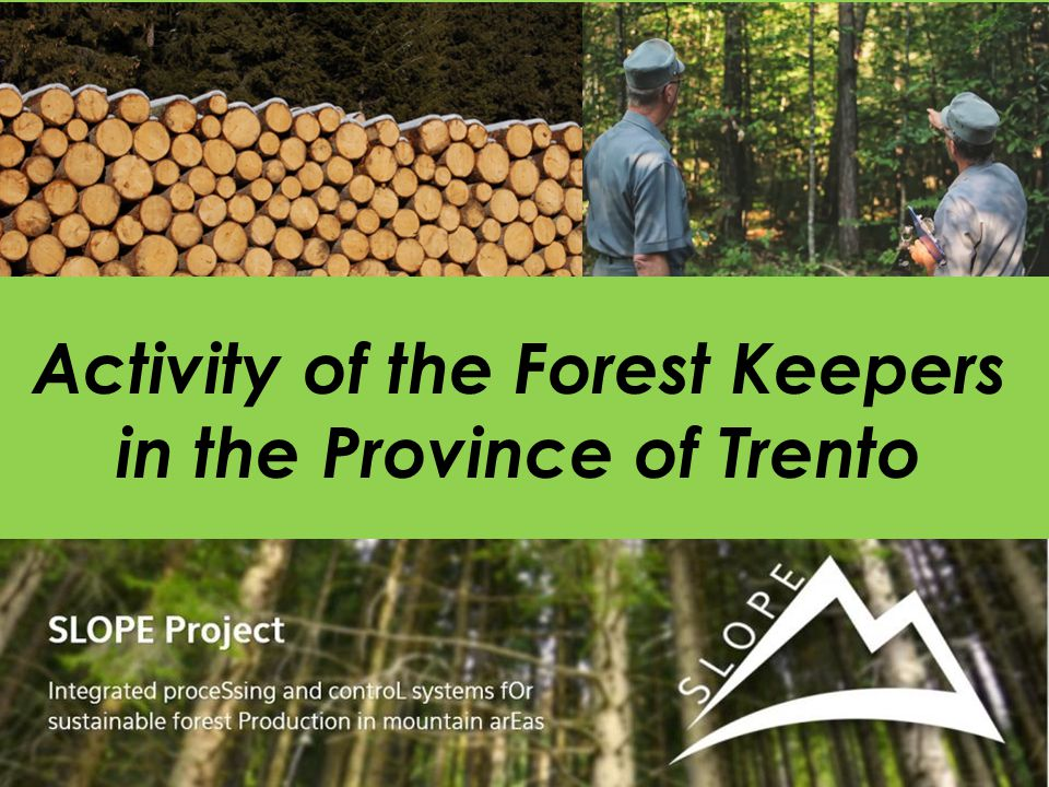 Activity of the Forest Keepers in the Province of Trento