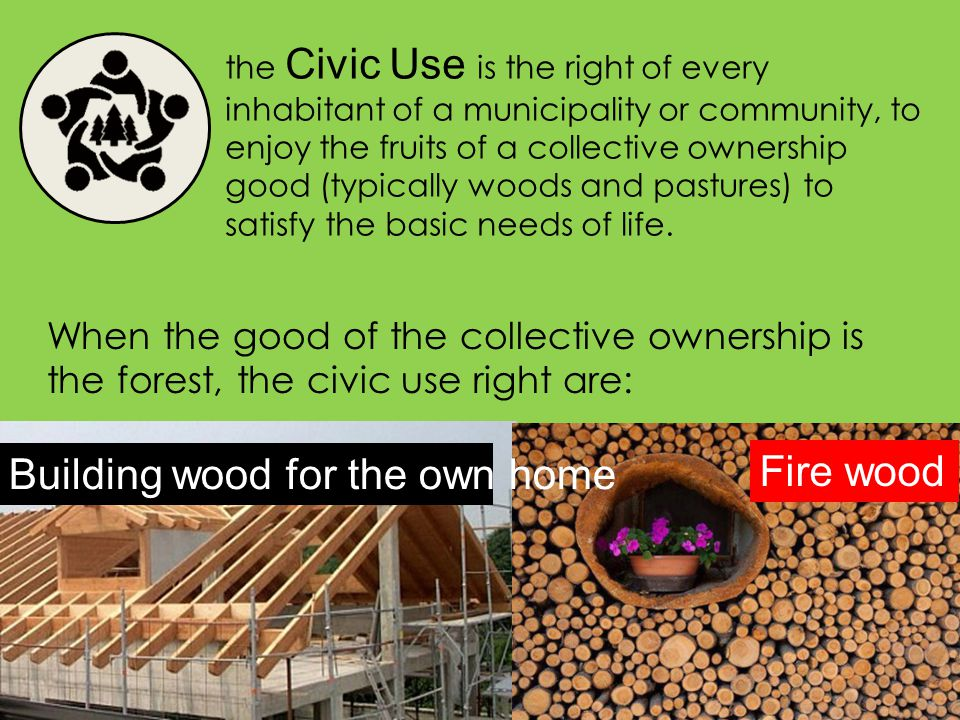 the Civic Use is the right of every inhabitant of a municipality or community, to enjoy the fruits of a collective ownership good (typically woods and