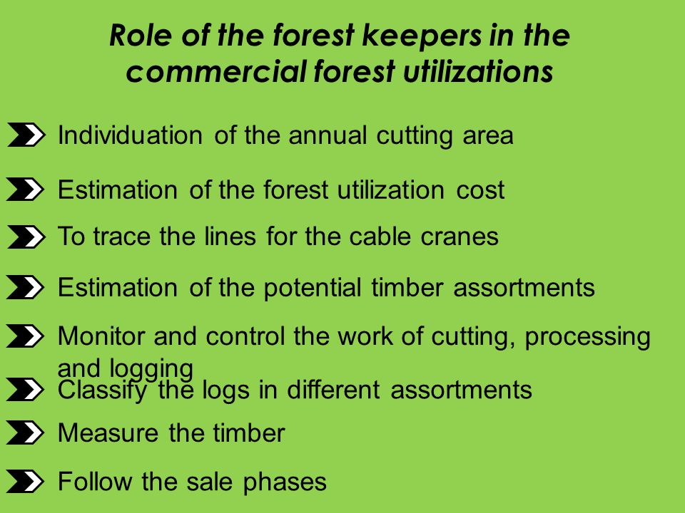 Role of the forest keepers in the commercial forest utilizations Individuation of the annual cutting area Estimation of the forest utilization cost Es
