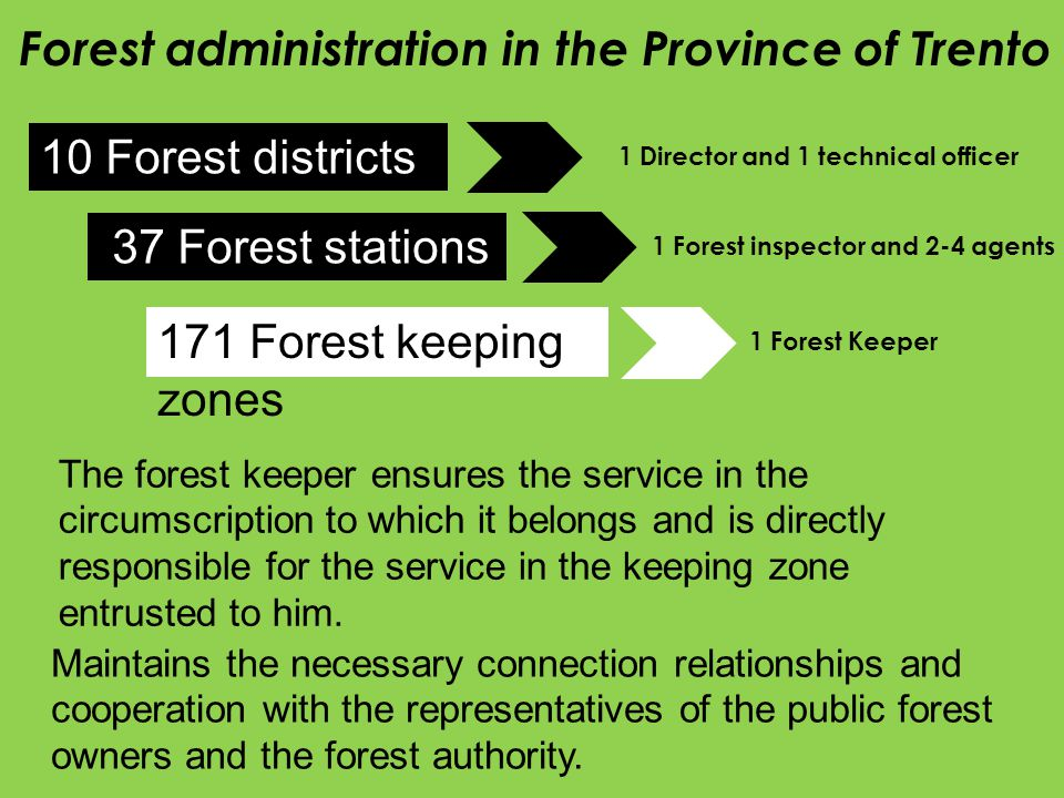 Forest administration in the Province of Trento 10 Forest districts 37 Forest stations 171 Forest keeping zones The forest keeper ensures the service