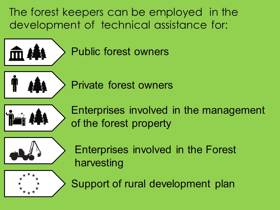 The forest keepers can be employed in the development of technical assistance for: Public forest owners Enterprises involved in the management of the forest property Enterprises involved in the Forest harvesting Support of rural development plan Private forest owners