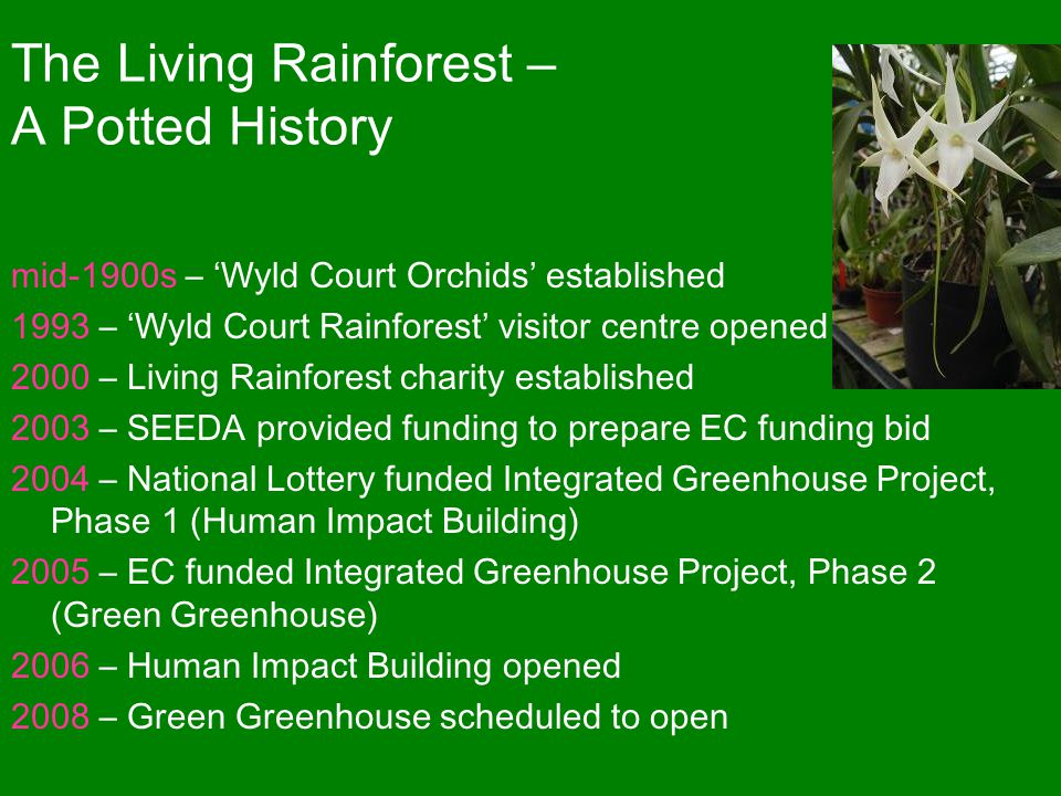 The Living Rainforest – A Potted History mid-1900s – 'Wyld Court Orchids' established 1993 – 'Wyld Court Rainforest' visitor centre opened 2000 – Living Rainforest charity established 2003 – SEEDA provided funding to prepare EC funding bid 2004 – National Lottery funded Integrated Greenhouse Project, Phase 1 (Human Impact Building) 2005 – EC funded Integrated Greenhouse Project, Phase 2 (Green Greenhouse) 2006 – Human Impact Building opened 2008 – Green Greenhouse scheduled to open