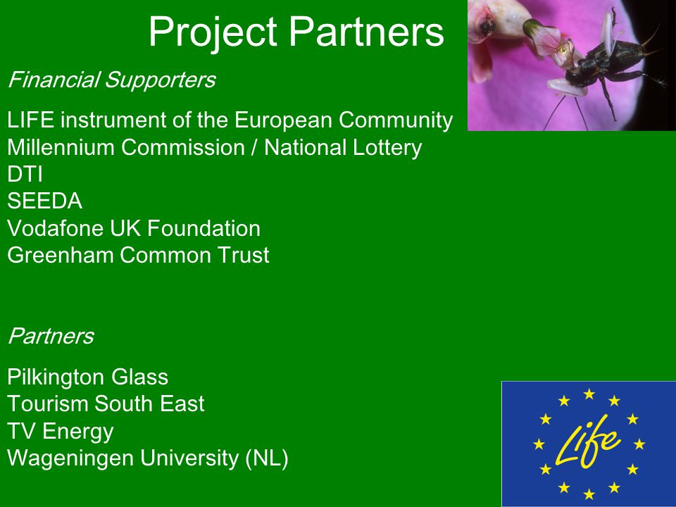 Project Partners Financial Supporters LIFE instrument of the European Community Millennium Commission / National Lottery DTI SEEDA Vodafone UK Foundation Greenham Common Trust Partners Pilkington Glass Tourism South East TV Energy Wageningen University (NL)