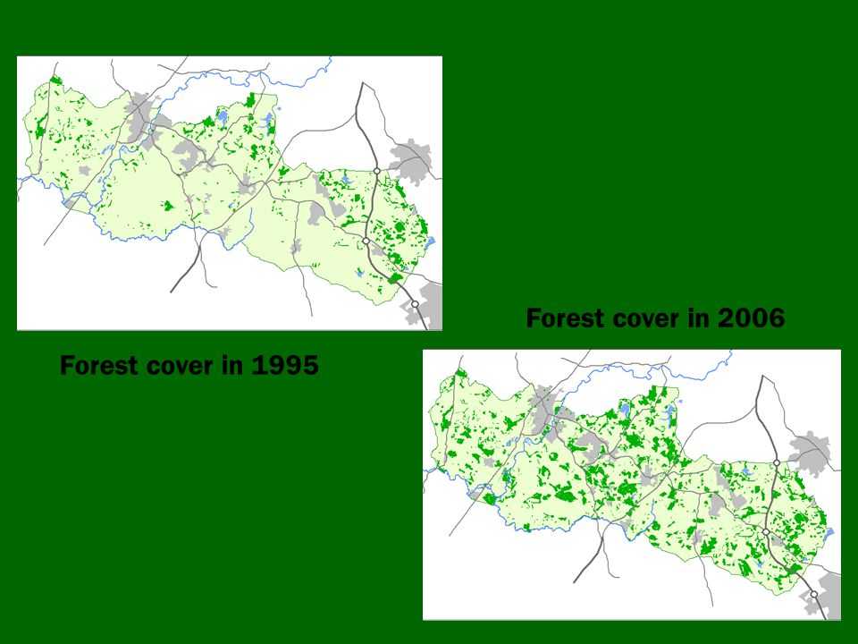 Forest cover in 1995 Forest cover in 2006