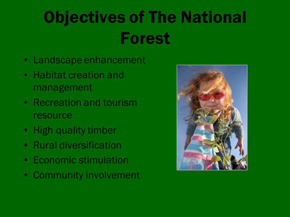 Objectives of The National Forest Landscape enhancement Habitat creation and management Recreation and tourism resource High quality timber Rural diversification Economic stimulation Community involvement
