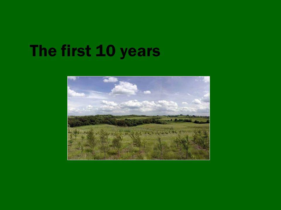 Landscape-scale habitat creation Woodland in 19916%3,010ha Woodland in 200616.8%8,440ha Woodland target33%16,550ha Other habitats in 19913%1,500ha Other habitats planned+2%1,000ha Total habitats38%19,000ha Total change+29%15,000ha Woodland in 19916%3,010ha Woodland in 200616.8%8,440ha Woodland target33%16,550ha Other habitats in 19913%1,500ha Other habitats planned+2%1,000ha Total habitats38%19,000ha Total change+29%15,000ha