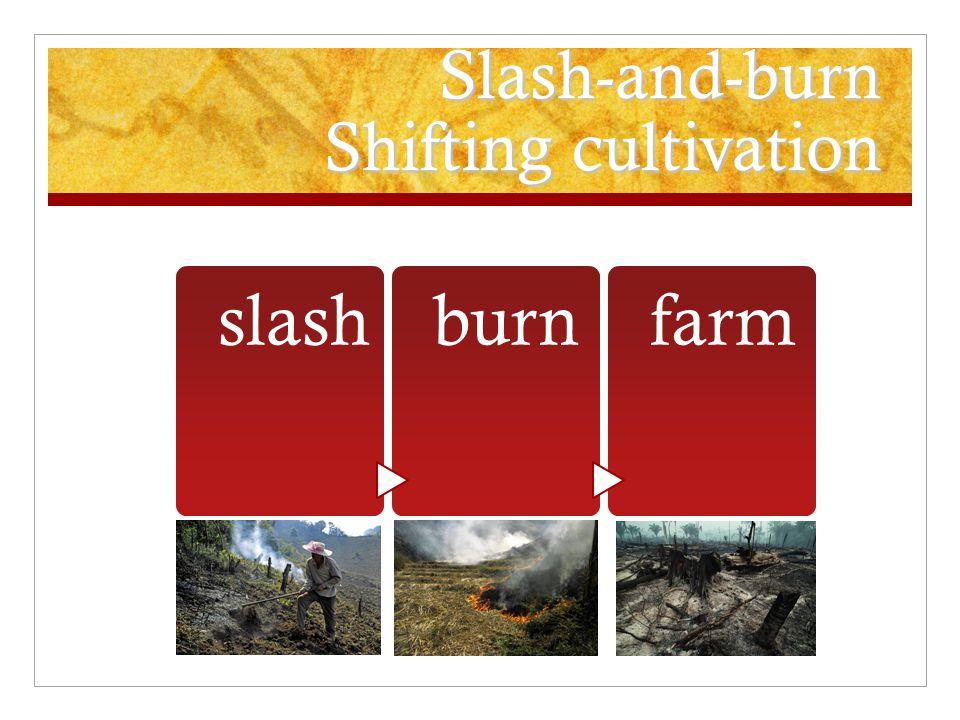Slash-and-burn Shifting cultivation slashburnfarm