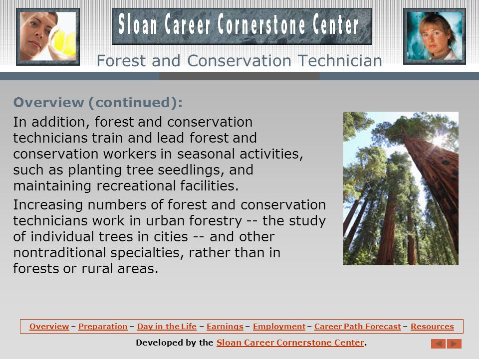 Overview: Forest and conservation technicians compile data on the size, content, and condition of forest land.