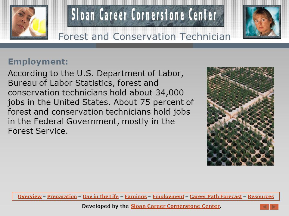 Earnings: According to the US Department of Labor, Bureau of Labor Statistics, the median hourly earnings of forest and conservation technicians are about $23.97 per hour.