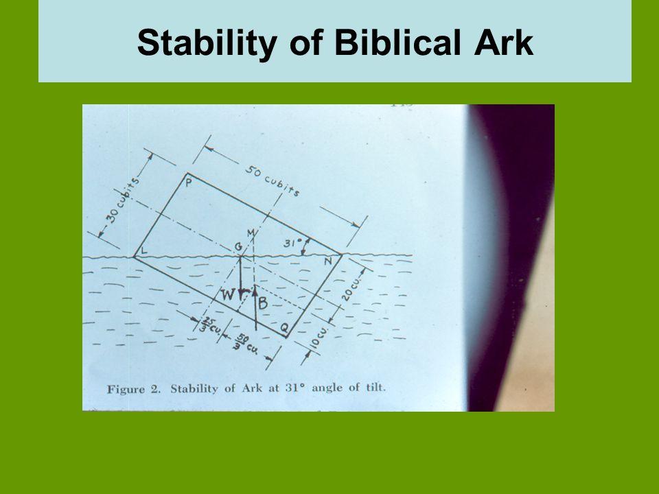 Stability of Biblical Ark