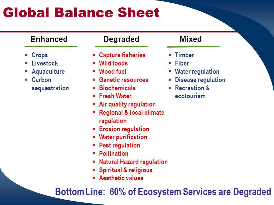 Global Balance Sheet  Crops  Livestock  Aquaculture  Carbon sequestration  Capture fisheries  Wild foods  Wood fuel  Genetic resources  Bioch