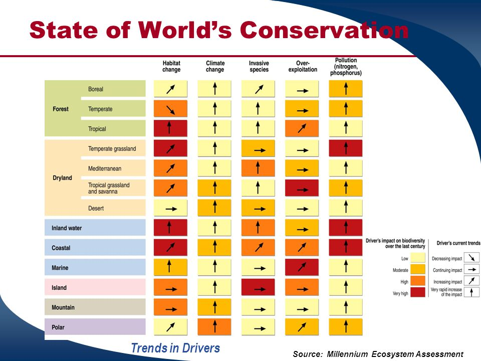 State of World's Conservation Trends in Drivers Source: Millennium Ecosystem Assessment