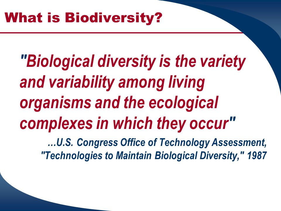 What is Biodiversity. Natural diversity is synonymous with biological diversity...