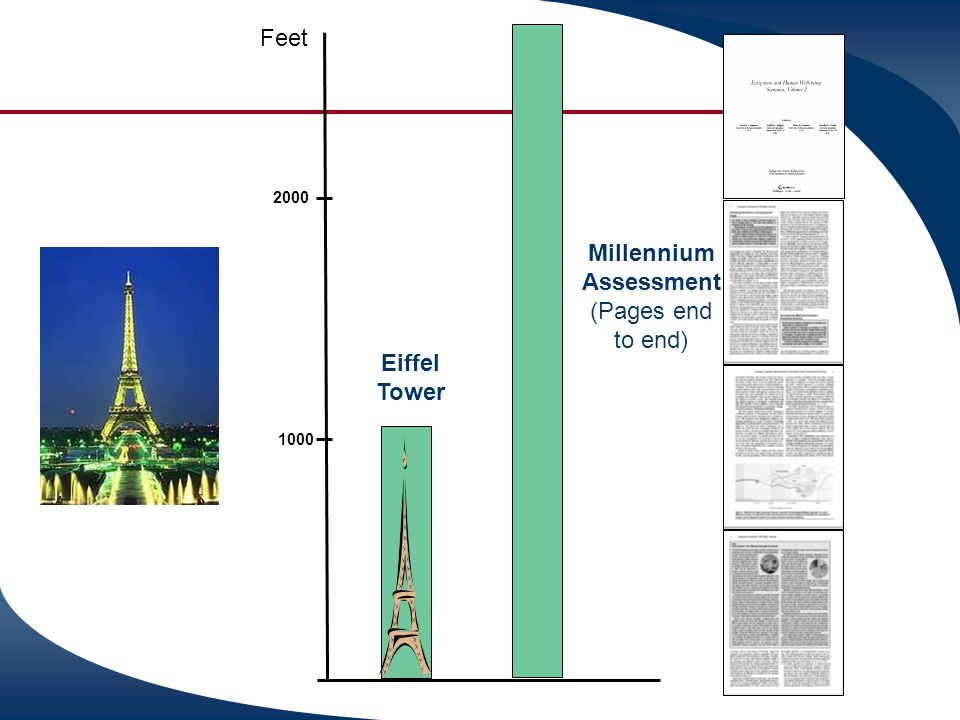 Millennium Assessment (Pages end to end) Eiffel Tower Feet 2000 1000