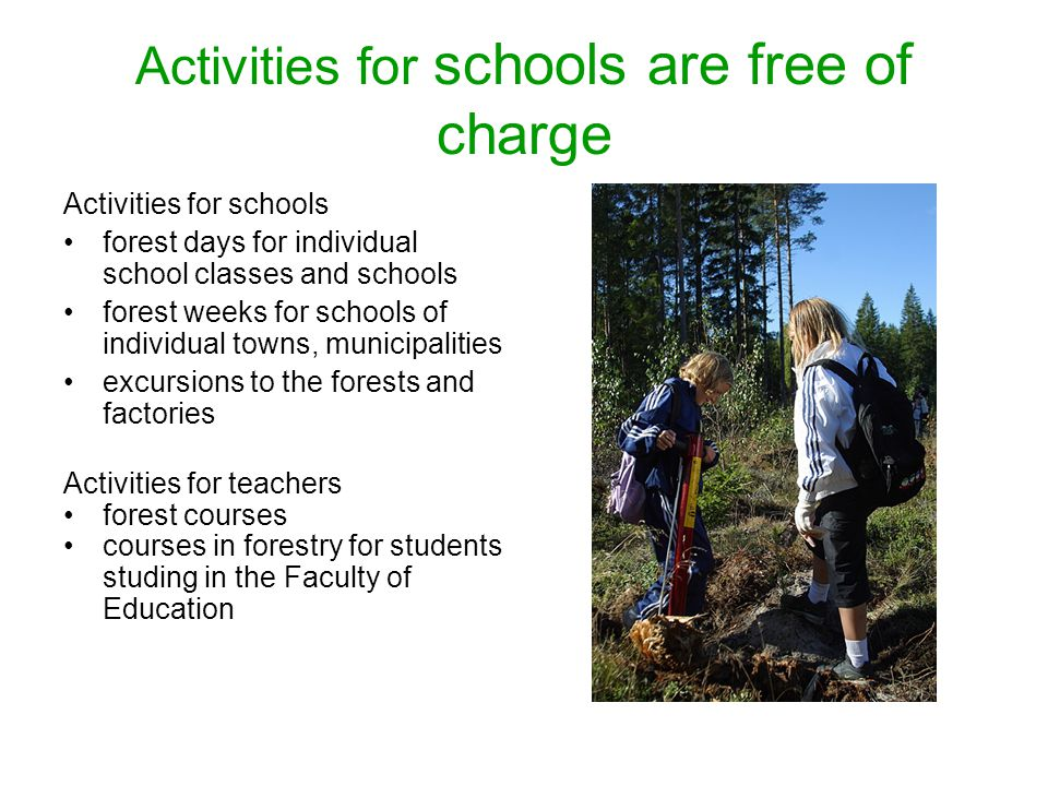 Activities for schools are free of charge Activities for schools forest days for individual school classes and schools forest weeks for schools of individual towns, municipalities excursions to the forests and factories Activities for teachers forest courses courses in forestry for students studing in the Faculty of Education