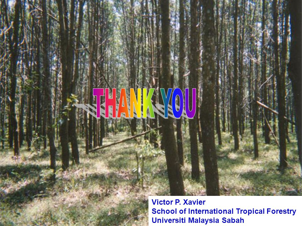 Victor P. Xavier School of International Tropical Forestry Universiti Malaysia Sabah
