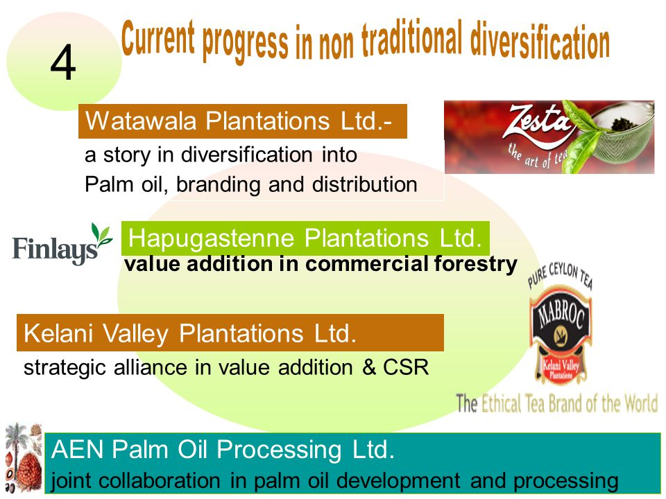 4 AEN Palm Oil Processing Ltd.