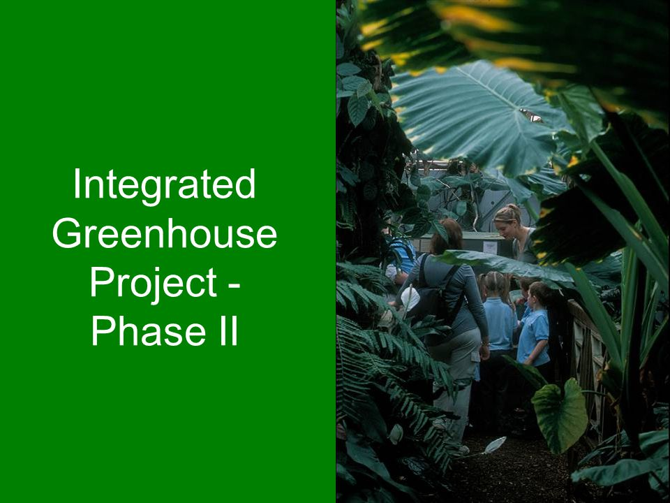 Integrated Greenhouse Project - Phase II