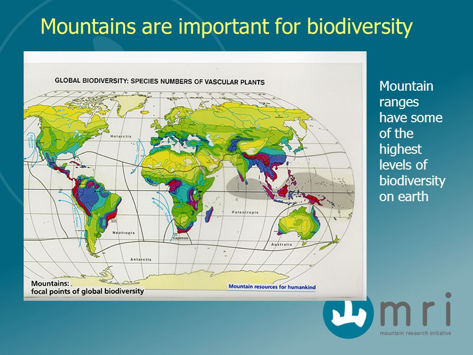 Mountains are important for biodiversity Mountain ranges have some of the highest levels of biodiversity on earth